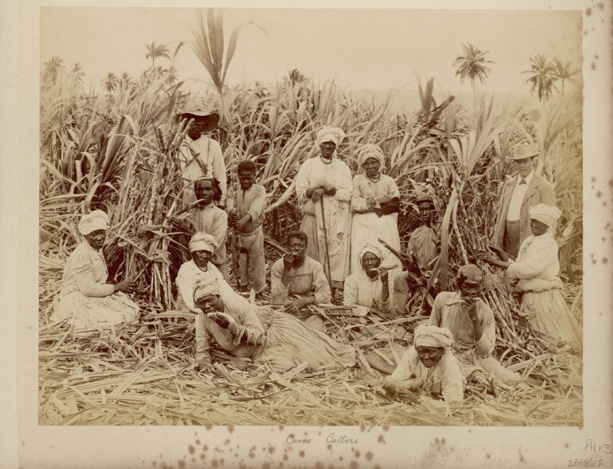 an analysis of abolition in africans Slaves and slavery in jamaica  there were movements in england pushing for the abolition of slavery in 1807 the african slave trade  an analysis of data for.