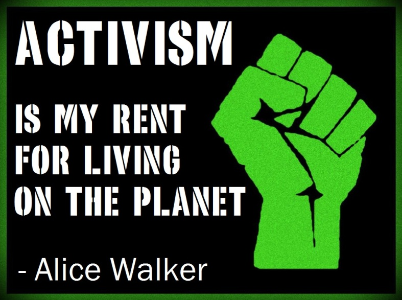 Image result for activism